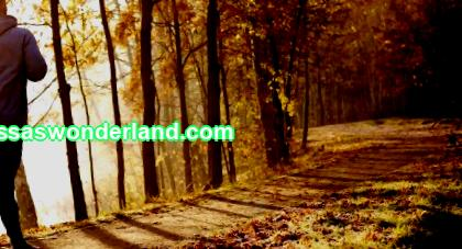 Running in the fall: how to understand and love fall jogging