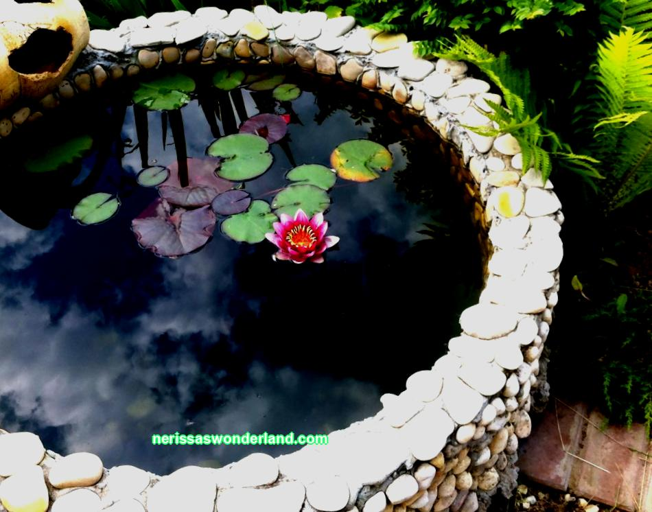 Decorative pond in the country