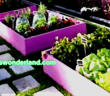 Diy high beds: step by step instructions