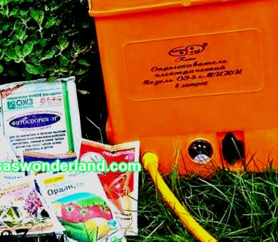 Tank mixtures for garden processing, how to apply