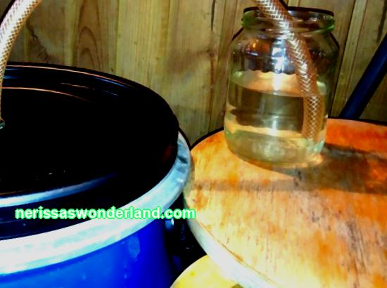 How to make a water seal with your own hands