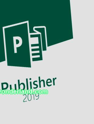 Microsoft Office Publisher 2019 (license), ALNG OLVS D Each Additional Product in Chita