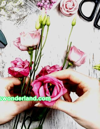 Floristry for beginners: learning to collect bouquets step by step