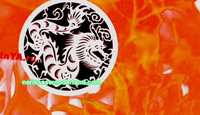 Fire Dragon Key features of the Chinese zodiac
