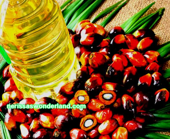Fruit products: palm oil