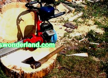 Recommendations for the operation and maintenance of the Druzhba chainsaw