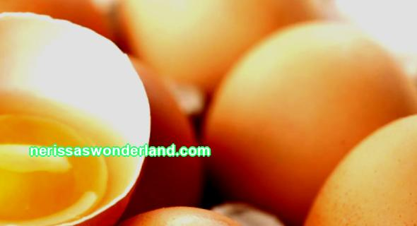 23 01. 4. Composition of chicken eggs The product is formed by the reproductive system of the chicken and consists of yolk and protein. Protein makes up 58% of the weight of the product. When