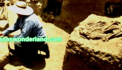 Archaeologists are specialists in history. They are studying how ancient people lived in everyday life. And also their culture. Archaeologists are studying these aspects using ancient artifacts. Which they themselves find during excavations. We will tell you more about the profession of an archaeologist. And also how ...